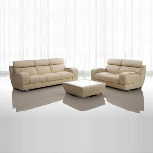 Future-7029 (Half Thick Leather Sofa)