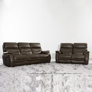 Future- 9917 (Half Thick Leather Sofa)